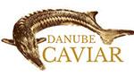 danube logo